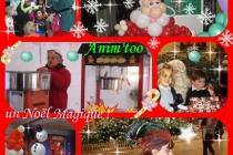 Anim'too animations : arbre de Noël