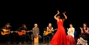 cuadro flamenco 1