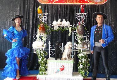 Organiser un spectacle avec des animaux pour un arbre de Noël d'enfants