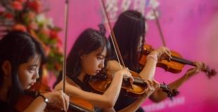Quatuor à cordes de musique classique pour diner d'entreprise
