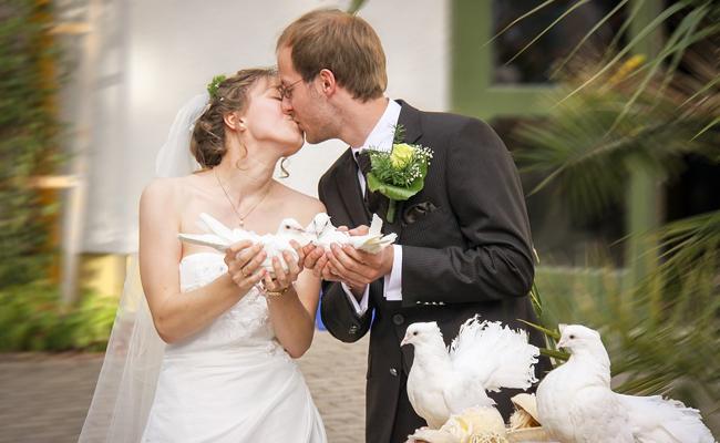 Organiser un lâcher de colombes pour un mariage