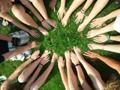 Incentive en événementiel d'entreprise : les clés d'une bonne organisation