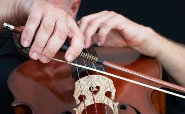 Accueil musical soirée d'entreprise : une violoncelliste ou quatuor à cordes