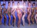 Samba et Danseuses brésiliennes avec Les Danseuses d'Or