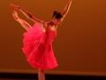 Danse théâtrale tous publics avec la Compagnie JCDM