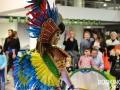 Brasil Fever - Orchestre - Batucada - Spectacle brésilien - Capoeira
