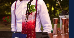Bar a mojito evenements professionnel lyon fin Pallet