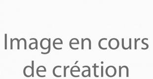 Acoé, Arts, Communication et Organisation d'Evénements